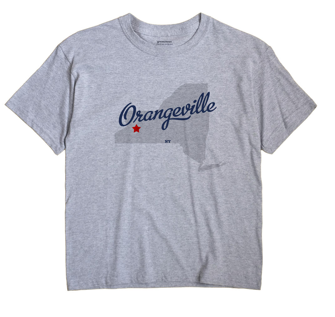 Orangeville New York NY T Shirt METRO WHITE Hometown Souvenir